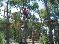 Koala parco avventura