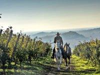 Una passeggiata autunnale a cavallo