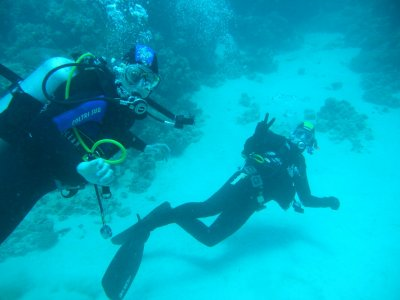 ASD Nettuno Divers Trento