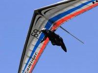 Volare liberi
