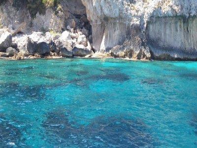 Exclusive Cruises Escursione in Barca