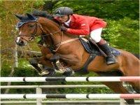 Competizioni a cavallo