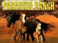 A.S.D. Paradiso Ranch