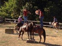 Esercitazioni volteggio a cavalllo