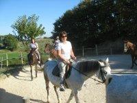 Equestrian landscapes