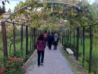 Visit in Val D Orcia