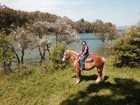 A cavallo tra i ciliegi in fiore