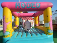 Il mini rodeo