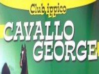 Cavallo George