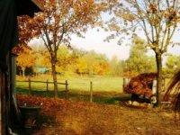 la campagna piemontese