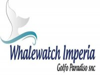 Whalewatch Imperia