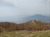 The dall'alto view