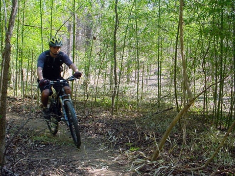 Avventura in bici