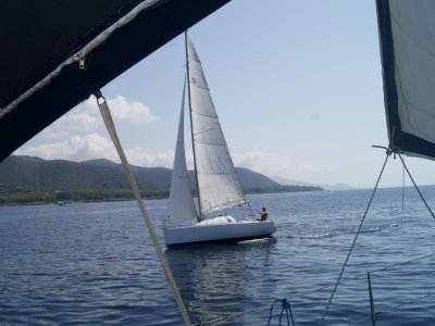 Vela Dream Srl Vela