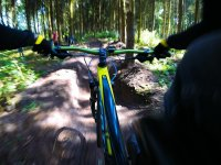 Mountain bike in the forest