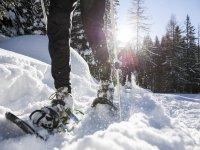 Immersi nella neve