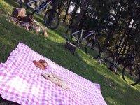 Picnic in mountain bike