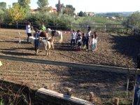 I pony e i bambini