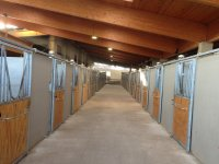 Sporting club stables