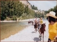 Passeggiate equestri Bologna