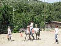 Riabilitazione con il cavallo