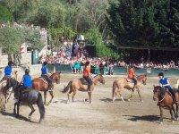 manifestazione cavalli