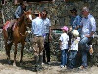 outdoor cavalli