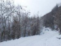 Ciaspole e racchette da neve