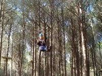 Di albero in albero