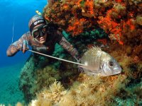 Sicily underwater fishing