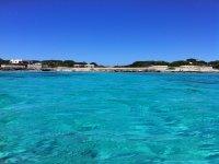 Excursion by boat Favignana