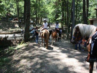 Lucania Outodoor Park Passeggiate a Cavallo