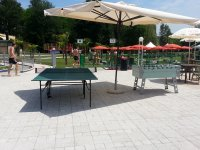 Il tavolo da ping pong