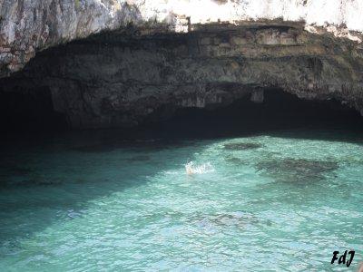 Escursioni Nemo Escursione in Barca