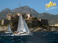 Vacanze in barca a vela Crociere Scuola  Flash Vela