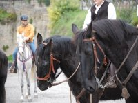 A cavallo in provincia di Roma