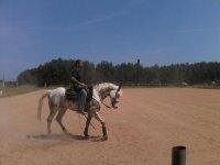 American riding lesson
