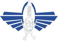 AIR VERGIATE S.R.L. Volo Elicottero