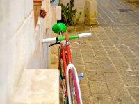 Noleggio bici e assistenza tecnica