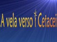 Vela e Cetacei