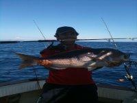 Pesca alle Egadi
