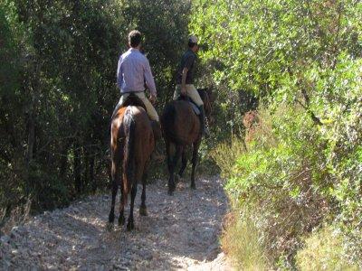 Speciale domenica: Tour cavallo proprio+pranzo