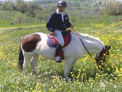 Team Horse San Pietro AD Lacum