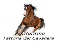 Agriturismo Fattoria del Cavaliere Passeggiate a Cavallo