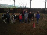 Team pony