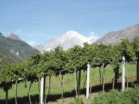 panorama Monte Bianco