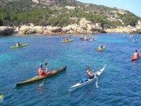 All in Kayak