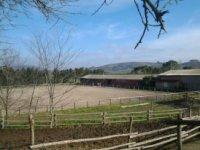 Melazza Ranch A.s.d.