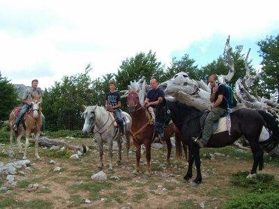 I Passi del Pollino A.S.D. Passeggiate a cavallo
