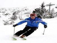 Alpine ski instructors